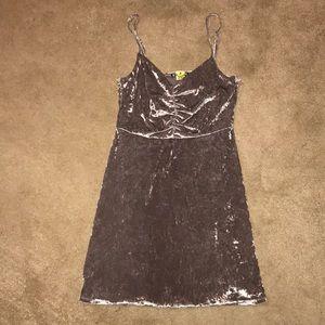 Express Velvet Party Dress